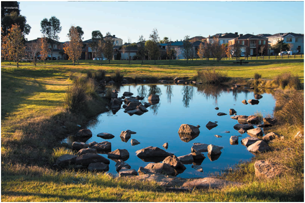 Somerfield Open Space and Water Features